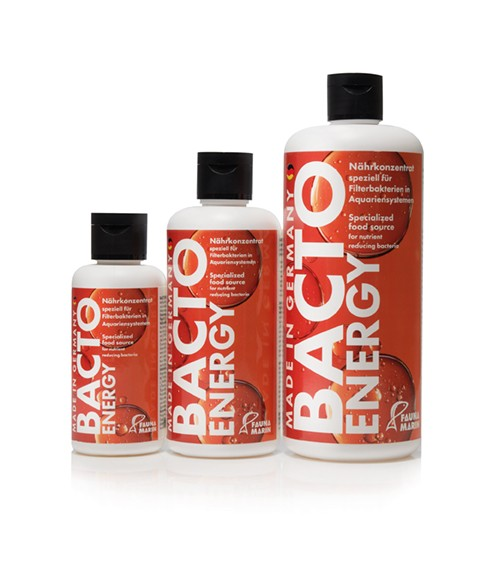 Bacto Energy 500ml