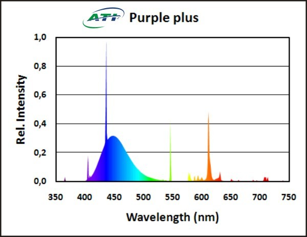 ATI - Purple Plus – 24 Watt