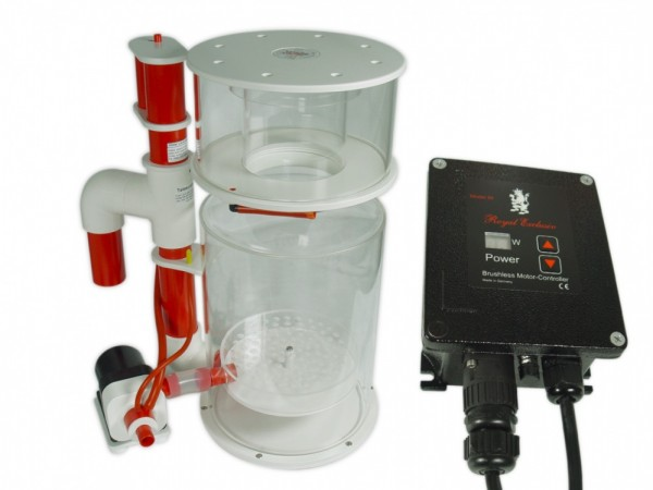Royal Exclusiv Bubble King® DeLuxe 300 intern mit RD3 Speedy 60W